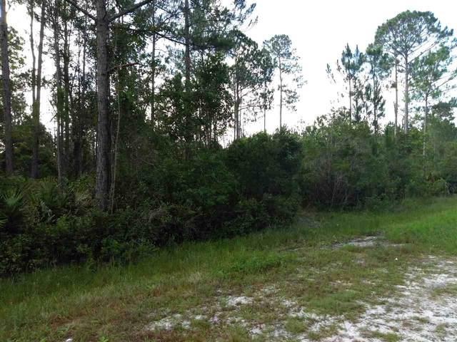 2891 Pineapple St, Bunnell, FL 32110 (MLS #214715) :: Bridge City Real Estate Co.