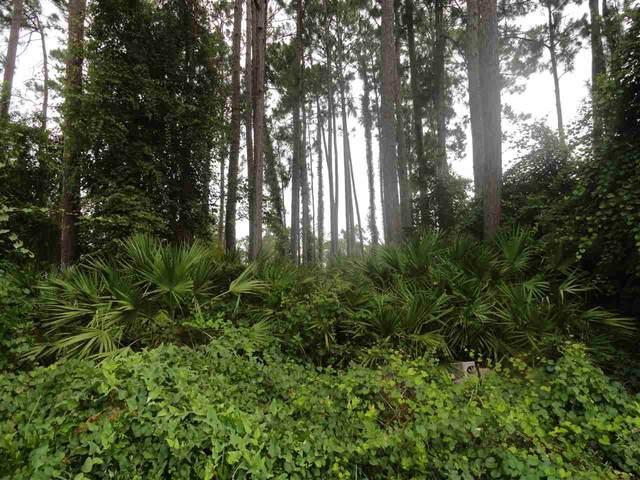 55 Burning Bush Dr, Palm Coast, FL 32137 (MLS #214784) :: 97Park
