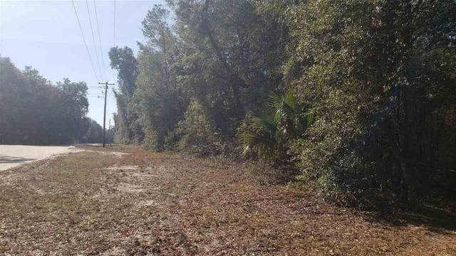255 Indian Lakes Forest Rd, Florahome, FL 32140 (MLS #215061) :: 97Park