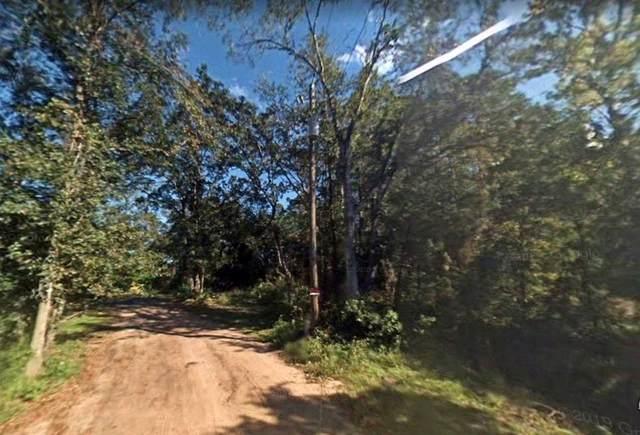 4926 Bradley St, Elkton, FL 32033 (MLS #215133) :: Better Homes & Gardens Real Estate Thomas Group