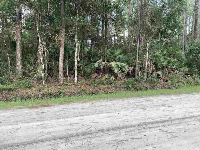 1133 Rosewood St, Bunnell, FL 32110 (MLS #215263) :: Keller Williams Realty Atlantic Partners St. Augustine