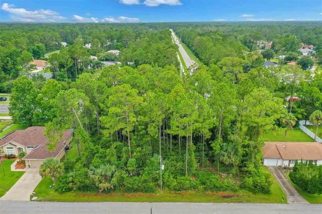 16 Potterville Lane, Palm Coast, FL 32164 (MLS #215310) :: Noah Bailey Group
