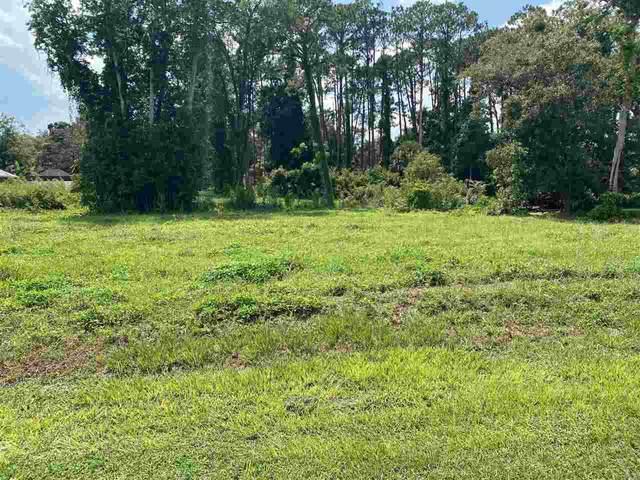 124 Aspen Rd, St Augustine, FL 32086 (MLS #215365) :: Olde Florida Realty Group