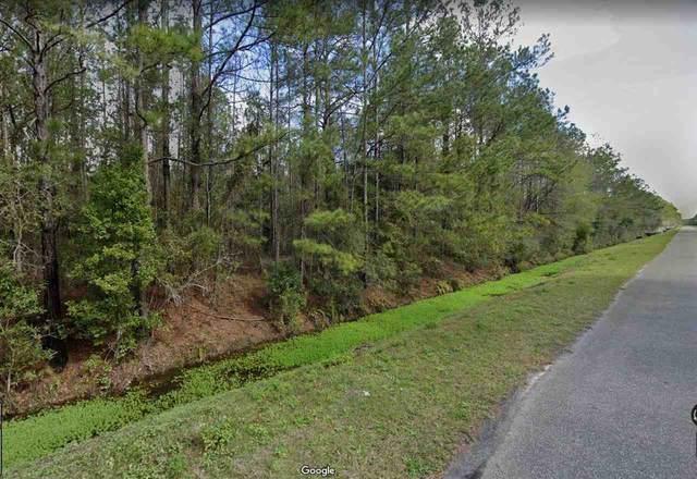 4360 Olga St, Hastings, FL 32145 (MLS #215374) :: Olde Florida Realty Group