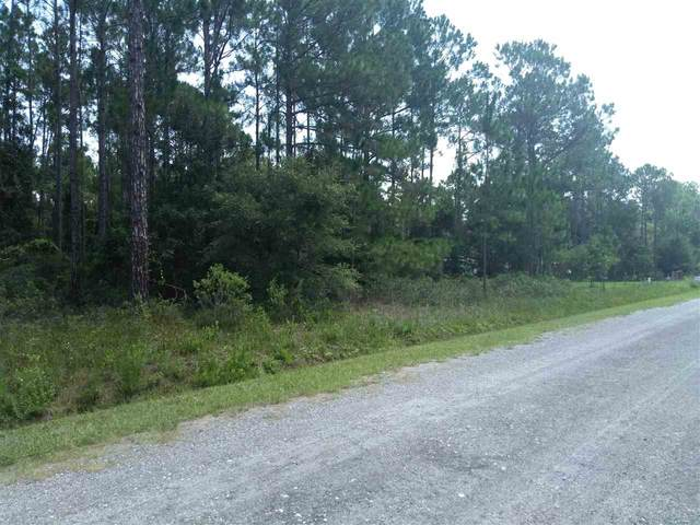 4450 Theresa St, Hastings, FL 32145 (MLS #215388) :: Olde Florida Realty Group