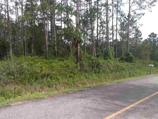 10270 Dillon Ave, Hastings, FL 32145 (MLS #215393) :: Bridge City Real Estate Co.