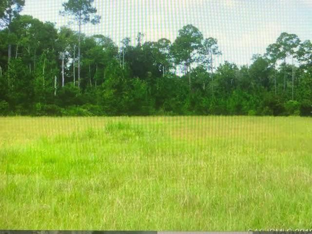 313 Woodridge Ln, St Augustine, FL 32086 (MLS #215898) :: Endless Summer Realty