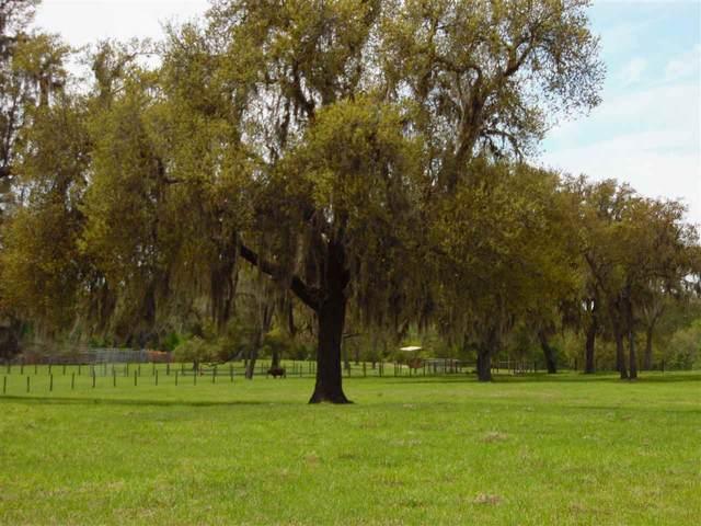 0 County Road 308, Crescent City, FL 32112 (MLS #217063) :: 97Park