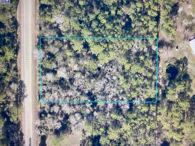 10740 Dillon Ave, Hastings, FL 32145 (MLS #217113) :: The Perfect Place Team
