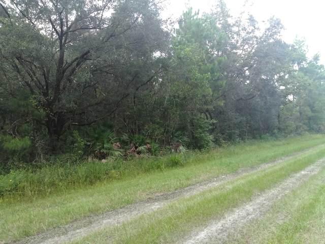 10325 Underwood Ave, Hastings, FL 32145 (MLS #217296) :: Keller Williams Realty Atlantic Partners St. Augustine