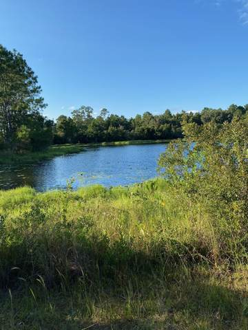 41 Londonderry Dr, Palm Coast, FL 32137 (MLS #217363) :: The Collective at Momentum Realty