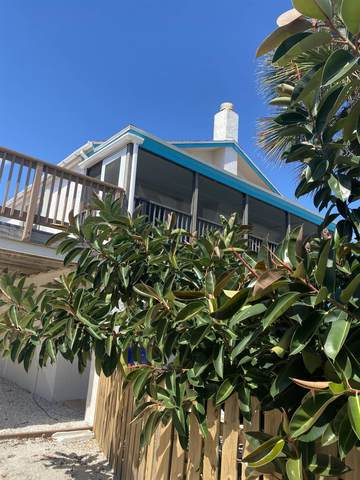 4985 Atlantic View, St Augustine, FL 32080 (MLS #217425) :: The Newcomer Group