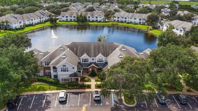 32204 Harbour Vista Circle, St Augustine, FL 32080 (MLS #217921) :: MavRealty