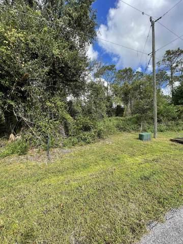 74 Kalamazoo Trl, Palm Coast, FL 32164 (MLS #218075) :: Olde Florida Realty Group