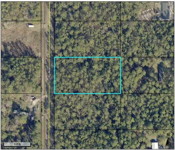 9930 Crotty Ave, Hastings, FL 32145 (MLS #218076) :: CrossView Realty