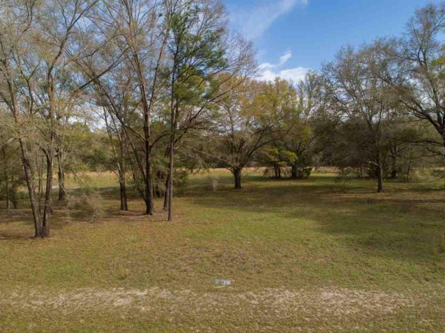 21639 NW 216th Lane (Lot 2), High Springs, FL 32643 (MLS #171611) :: Memory Hopkins Real Estate