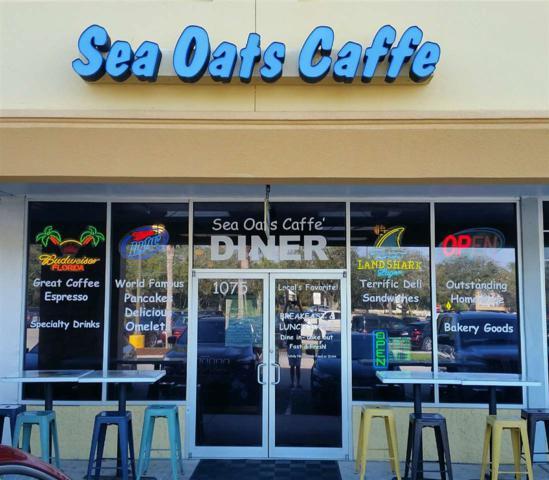 1075 A1a Beach Blvd, St Augustine, FL 32080 (MLS #177283) :: Pepine Realty