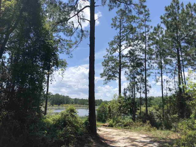 309 Lake Como Drive, Pomona Park, FL 32181 (MLS #179424) :: Memory Hopkins Real Estate