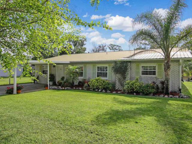 226 Belle Drive, Satsuma, FL 32189 (MLS #187132) :: Memory Hopkins Real Estate