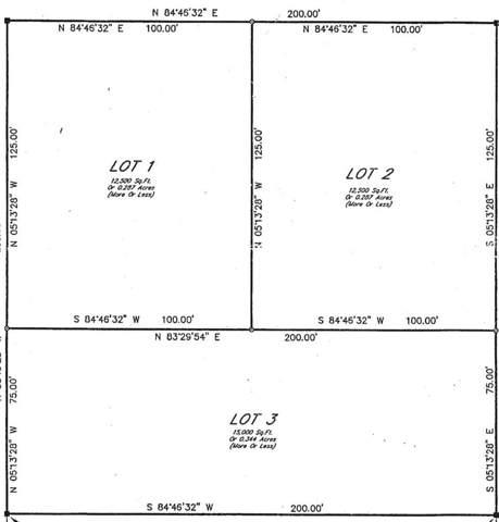 785 Pearl Street, St Augustine, FL 32084 (MLS #191409) :: Memory Hopkins Real Estate