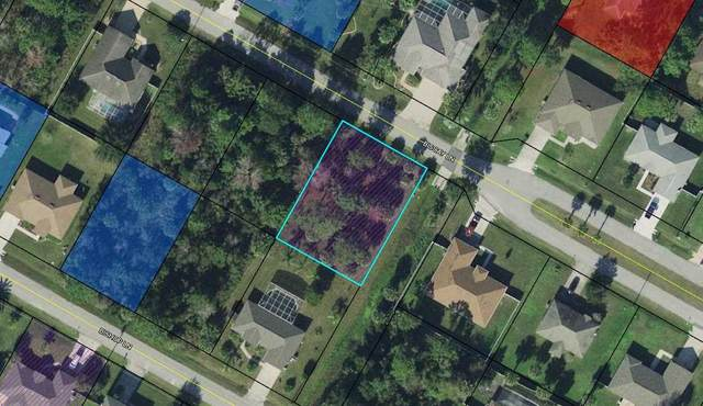 19 Biscay Ln, Palm Coast, FL 32137 (MLS #198987) :: The Newcomer Group