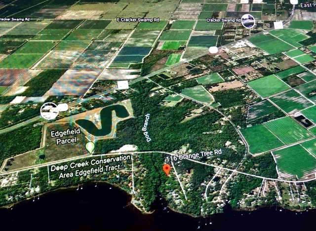 116 Orange Tree Road, East Palatka, FL 32131 (MLS #199010) :: Better Homes & Gardens Real Estate Thomas Group
