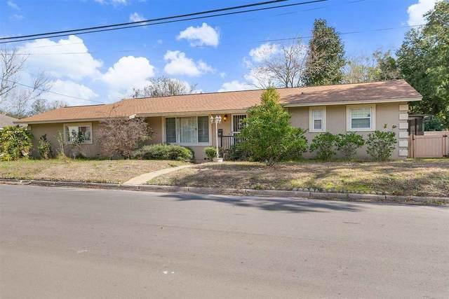 73 Palmer Street, St Augustine, FL 32084 (MLS #210878) :: MavRealty