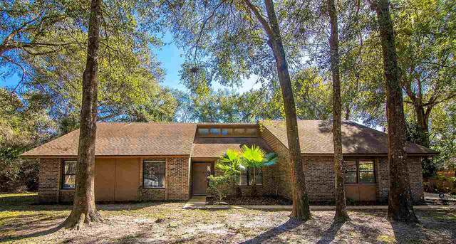 713 Camelia Trl, St Augustine, FL 32086 (MLS #211046) :: The Newcomer Group