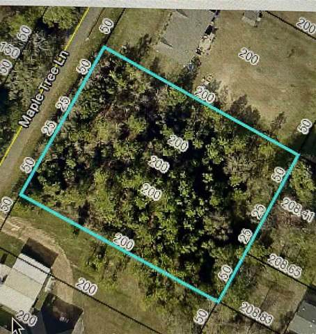 Maple Tree Lane, Elkton, FL 32033 (MLS #212146) :: Bridge City Real Estate Co.