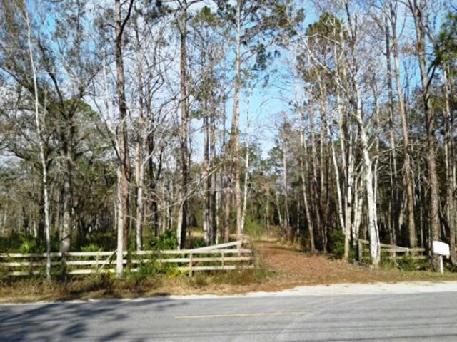 6350 County Road 208, St Augustine, FL 32092 (MLS #176153) :: Memory Hopkins Real Estate