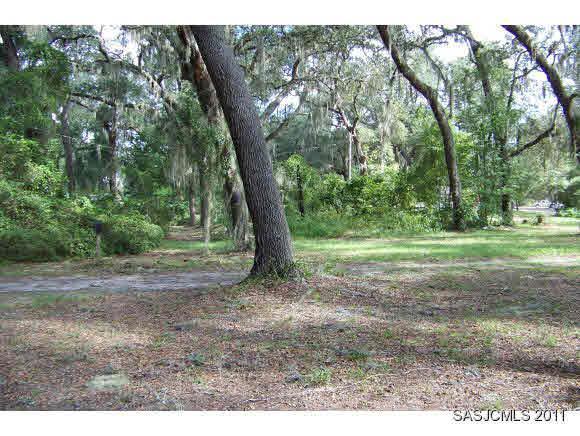 751 S Hwy 17, San Mateo, FL 32187 (MLS #166155) :: Memory Hopkins Real Estate