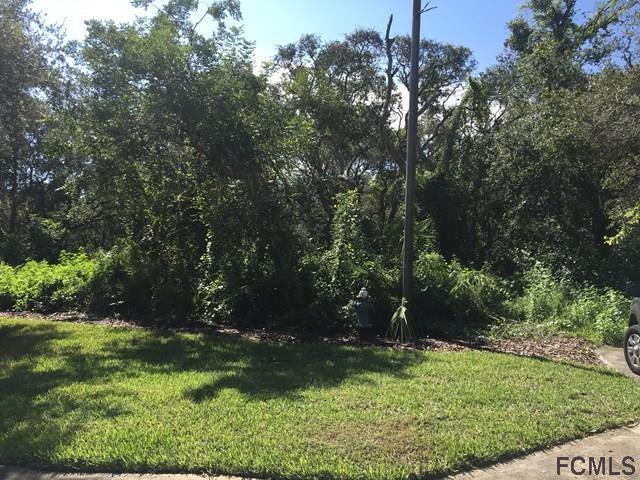 26 16th Rd. E, Palm Coast, FL 32137 (MLS #173708) :: Pepine Realty