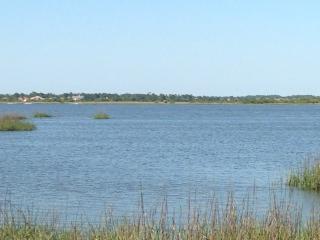 Standish Dr, St Augustine, FL 32086 (MLS #174922) :: 97Park