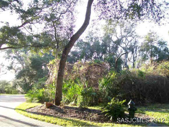 217 Golden Oaks Ln, St Augustine, FL 32080 (MLS #175659) :: Florida Homes Realty & Mortgage