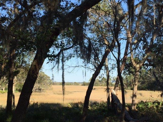 137 Marshall Creek Dr, St Augustine, FL 32095 (MLS #177547) :: Florida Homes Realty & Mortgage