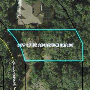 379 Ocean Forest Drive, St Augustine Beach, FL 32080 (MLS #177591) :: St. Augustine Realty