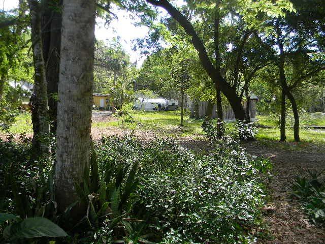 21 Davis Street, St Augustine, FL 32084 (MLS #179741) :: 97Park
