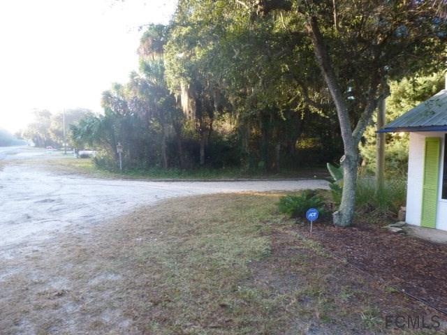 5358 N Ocean Shore Blvd., Palm Coast, FL 32137 (MLS #182462) :: Memory Hopkins Real Estate