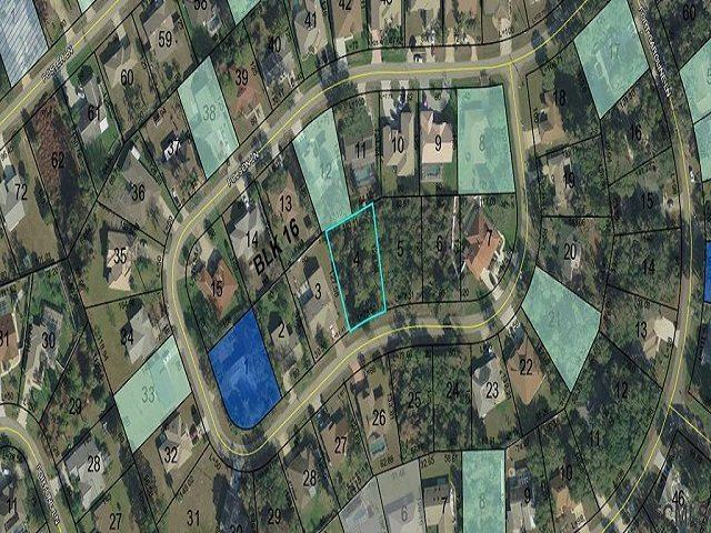 63 Folson Lane, Palm Coast, FL 32137 (MLS #185373) :: Tyree Tobler | RE/MAX Leading Edge