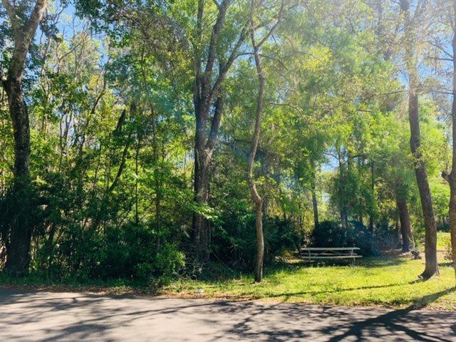 Bruen St., St Augustine, FL 32084 (MLS #185968) :: Florida Homes Realty & Mortgage