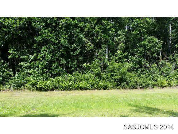 121 Pioneer Trail, Palatka, FL 32177 (MLS #186354) :: Memory Hopkins Real Estate