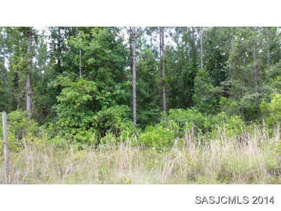 215 Eagle Creek, Palatka, FL 32177 (MLS #186357) :: Memory Hopkins Real Estate