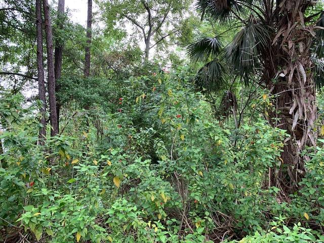 913 Lot 9 Avery St. #9, St Augustine, FL 32084 (MLS #186760) :: Tyree Tobler | RE/MAX Leading Edge