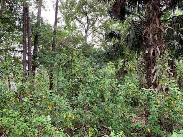 913 Lot 10 Avery St. #10, St Augustine, FL 32084 (MLS #186761) :: Tyree Tobler | RE/MAX Leading Edge