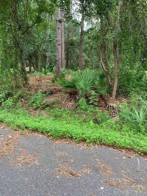 891 Collier Blvd Lot B, St Augustine, FL 32084 (MLS #190126) :: 97Park
