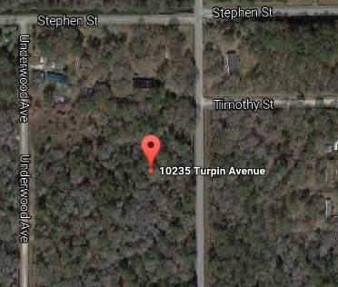 10275 Turpin Ave, Hastings, FL 32145 (MLS #191786) :: Tyree Tobler | RE/MAX Leading Edge