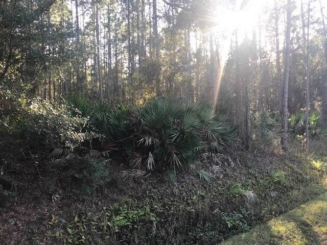 203 Pomona Landing Road, Crescent City, FL 32112 (MLS #192747) :: 97Park