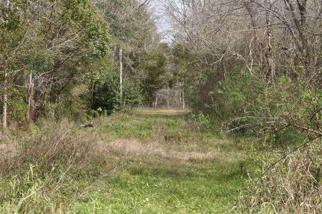 0 E Essex Road, Hastings, FL 32145 (MLS #212497) :: The Perfect Place Team
