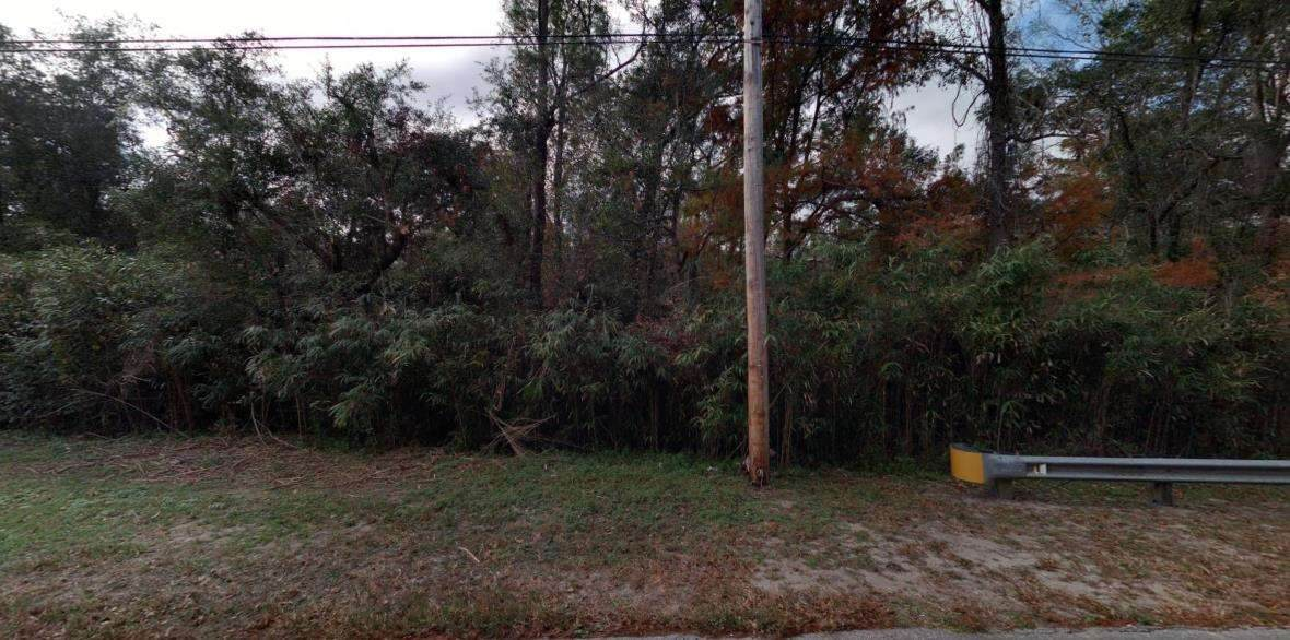 1015 Wildwood Drive - Photo 1