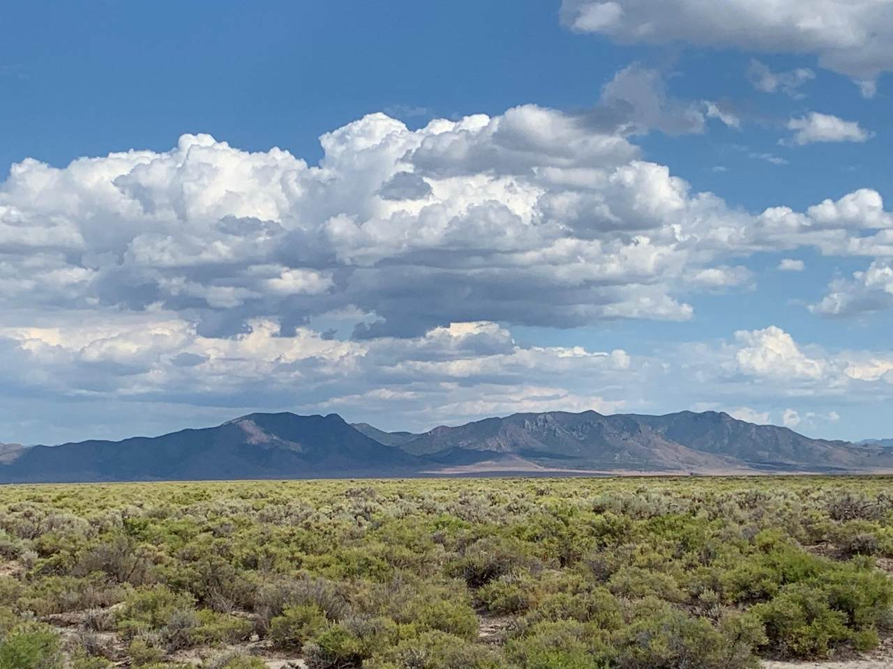 236 Acres On 3200 E - Photo 1